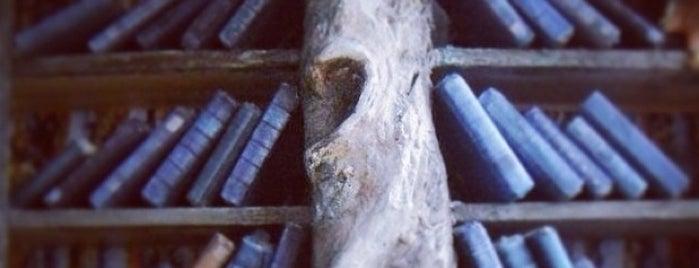 Magnolia Culture is one of Posti salvati di Nezih.
