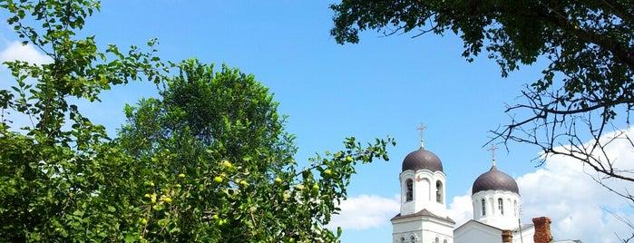 Церковь Казанской Божией Матери (село Ламишино) // Church of Our Lady of Kazan is one of Храмы Истринского района.