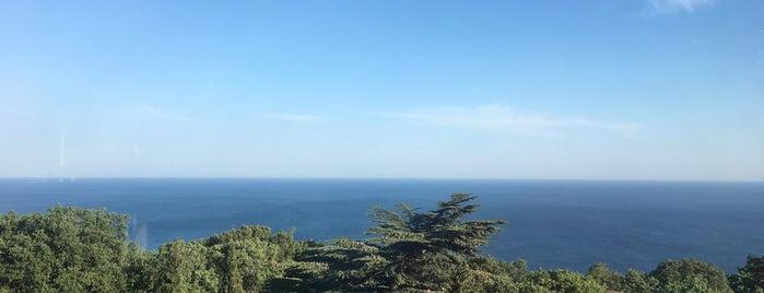 Балкан гриль is one of Crimea.