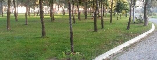 Hasbahçe Parkı is one of Lieux sauvegardés par Sibel.
