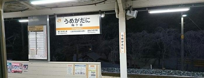 Umegadani Station is one of 熊野古道 伊勢路.