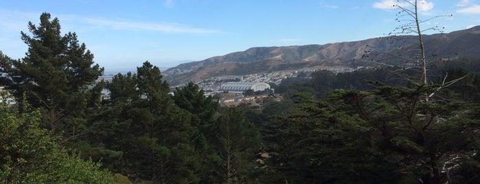 John McLaren Park is one of San Francisco Bay.