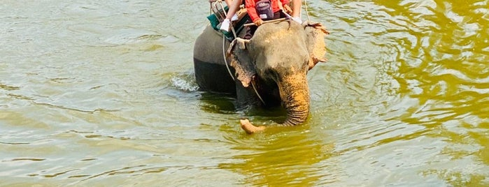 Thappraya Safari is one of Tempat yang Disukai Shura.