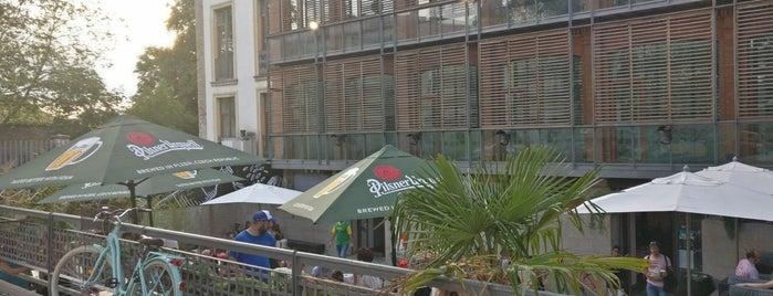 Falerina Fusion is one of Bar–Café en Vitoria-Gasteiz.