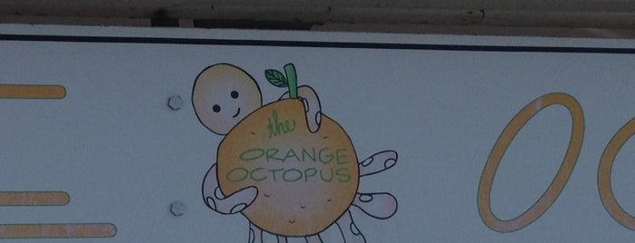 The Orange Octopus is one of Lieux qui ont plu à Stuart.