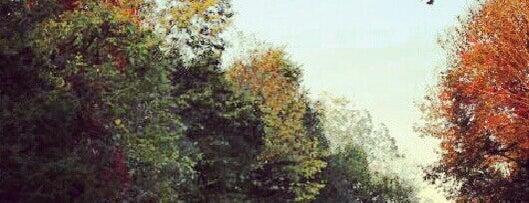 Evansburg State Park is one of Orte, die Irina gefallen.