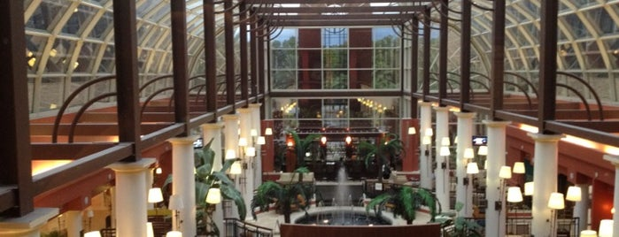 Sheraton Orlando North Hotel is one of Laura : понравившиеся места.
