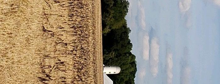 Evelynton Plantation is one of Virginia Jaunts.
