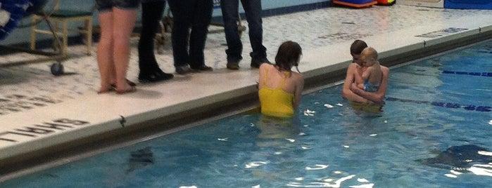 Horseheads High School Pool is one of Jen 님이 좋아한 장소.