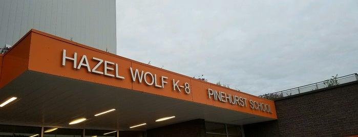 Hazel Wolf K-8 is one of Option Schools.