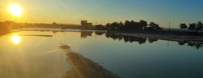 Поморийско езеро (Pomorie lake) is one of BULGARIA.