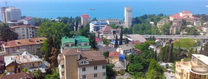 Светлана is one of Сочи.