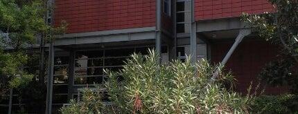 İstanbul Bilgi Üniversitesi is one of İstanbul'daki Üniversite ve MYO'ların Kampüsleri.