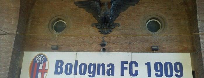 Stadio Renato Dall'Ara is one of Lega Calcio TIM Serie A 2013-2014.
