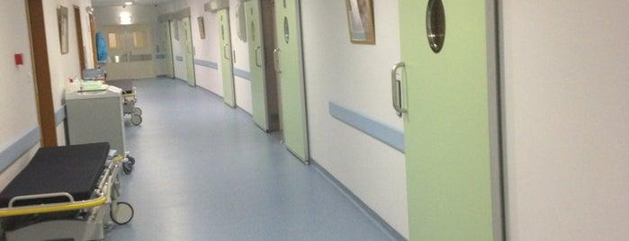 Клинический госпиталь «Лапино» is one of Lugares favoritos de Ника.