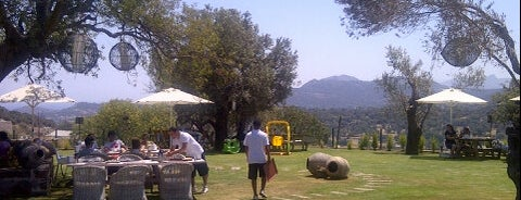 Bodrum Farmville is one of Locais salvos de Burak.