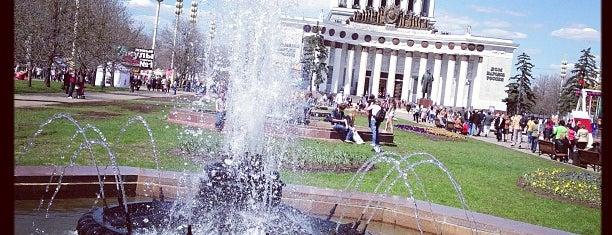 14 фонтанов Центральной аллеи is one of Tempat yang Disukai Stanislav.