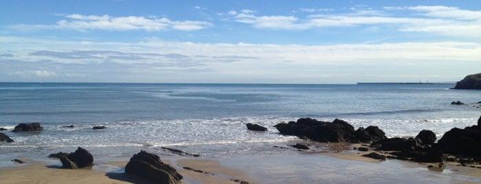 Playa de La Palmera is one of Para repetir.