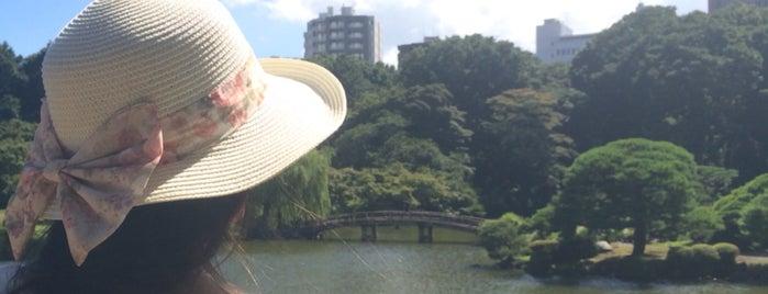 新宿中央公園 is one of Japon.