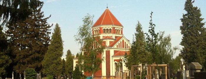 Ústřední hřbitov Neředín is one of Experience Olomouc like a locals!.