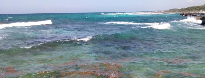Playa Akumal is one of Lugares favoritos de Anapaula.