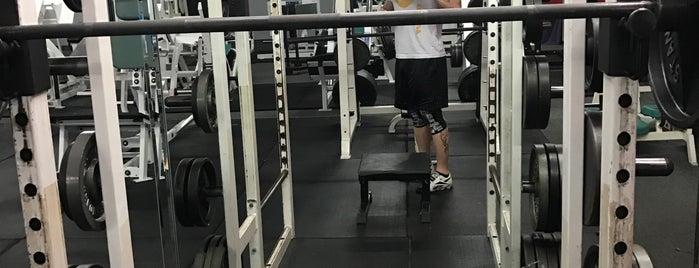 World Gym - Fayetteville, NC is one of Sarah'ın Beğendiği Mekanlar.
