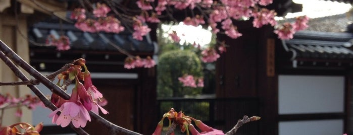 Choutokuji Temple is one of Sakura Trip 2017.