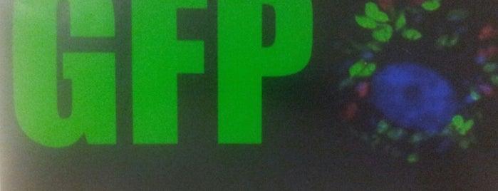 UFPR - Laboratório de Genômica Funcional de Parasitos (GFP) is one of UFPR - Centro Politécnico.