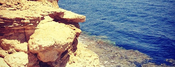 Reef Beach is one of Sharm.