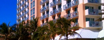 Hollywood Beach Marriott is one of Orte, die Rodrigo gefallen.