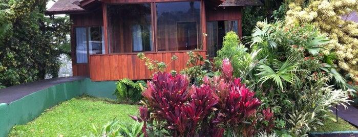 Arenal Paraíso Hotel Resort & Spa is one of Locais curtidos por Ivan.
