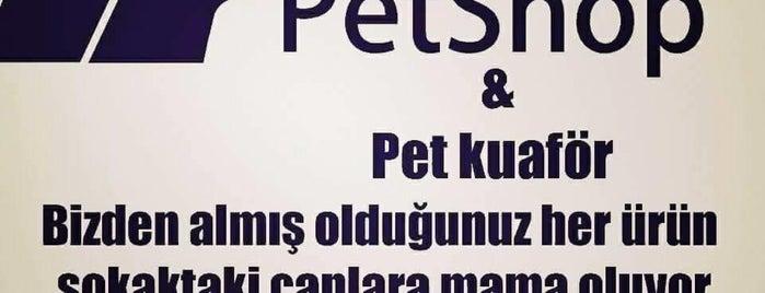 Tepeören Villaları is one of สถานที่ที่ Serdar ถูกใจ.
