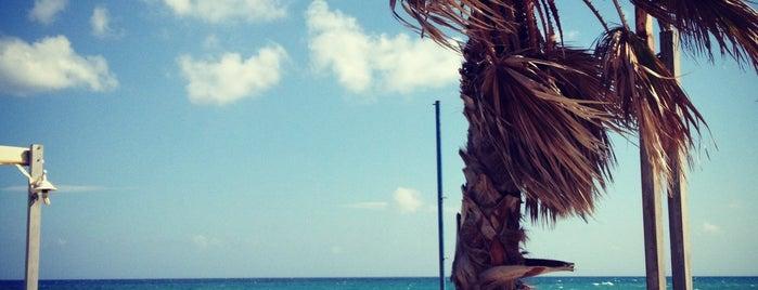 Corali Beach is one of Oksana 님이 좋아한 장소.