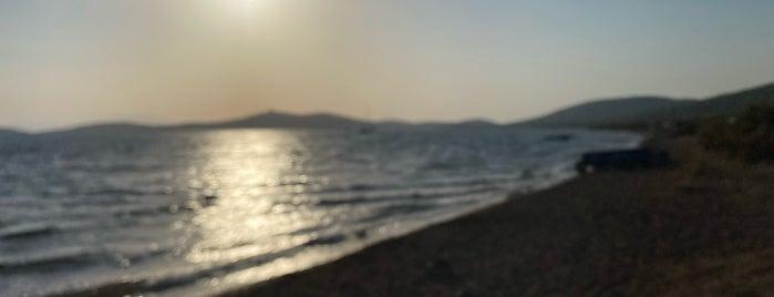 Balıkçı Barınağı Plajı is one of Balıkesir Plajları.