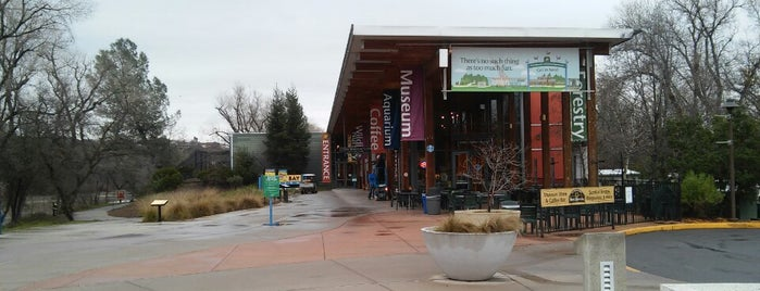 Turtle Bay Exploration Park is one of Museums.
