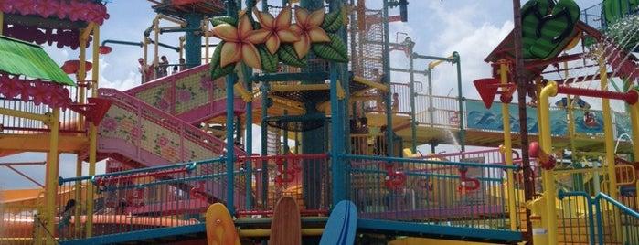 Hawaiian Falls Waterpark Roanoke is one of Terry: сохраненные места.