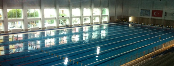 Alanya Olimpik Kapalı Yüzme Havuzu is one of Yunusさんのお気に入りスポット.