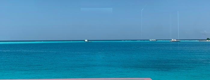 Lux* North Male Atoll is one of M'ın Beğendiği Mekanlar.