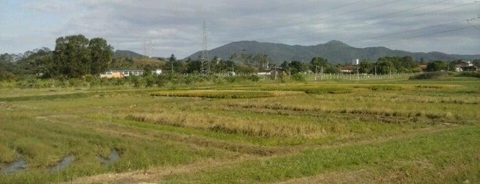 EEI - EPAGRI is one of Orte, die Luis Gustavo gefallen.