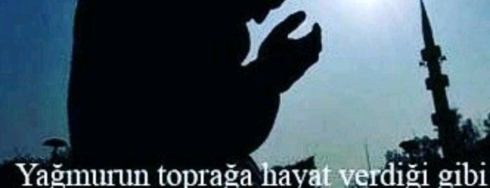 Caploonba- Hayal Fabrikası is one of Locais curtidos por Mehmet Ali.