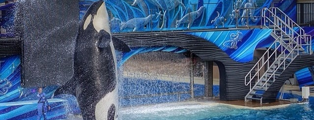 SeaWorld San Diego is one of The Most Popular Theme Parks in U.S..