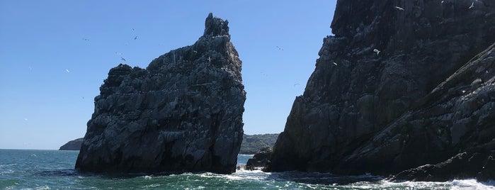 Ireland's Eye is one of dublin solo trip.