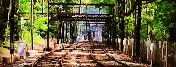 MBTA Longwood Station is one of สถานที่ที่ al ถูกใจ.