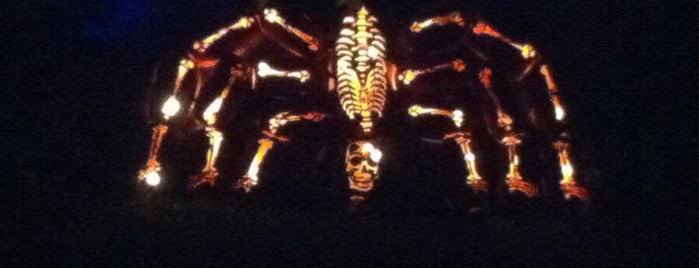 The Great Jack O'Lantern Blaze is one of Orte, die Aesop gefallen.