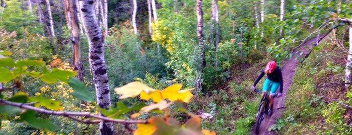Glenwild Trail Complex is one of Lugares favoritos de Joe.