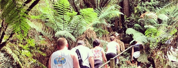 1000 Steps Kokoda Memorial Track is one of Lugares favoritos de T..