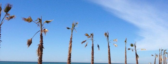 Playa Malgrat de Mar is one of Playas de España: Cataluña.