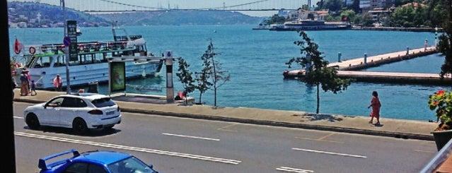 Fish Var Balıkçı is one of komn.