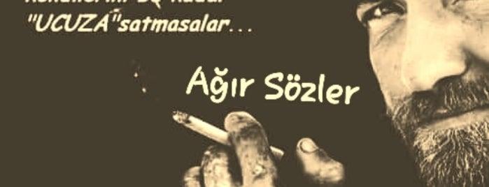 Karadeniz Balikcilik is one of Anadolu Yakasinda Yedik!.