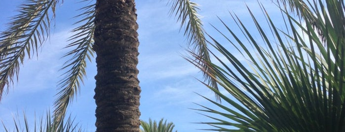 Bestial Beach Club is one of Barcelona.